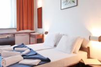 Hotel Olga Dedijer 2*